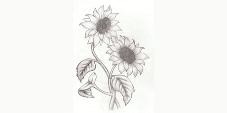 60min Learn to Sketch: Sunflowers @4PM  (Ages 6+) tickets