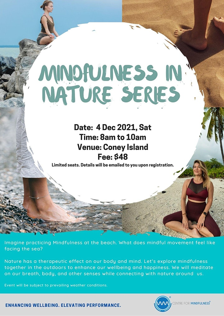 Mindfulness in Nature Series (Beach) image