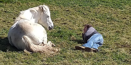 Introduction to  Equine Assisted Counselling using the Eagala Model tickets