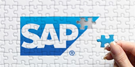 SAP Discovery tickets