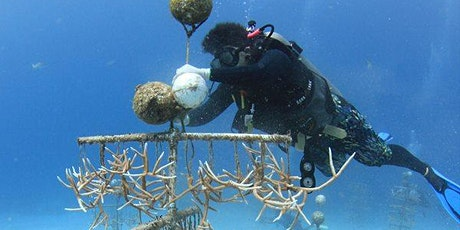 April Guest Speaker Giselle Deane: Nature Conservation in the Bahamas tickets