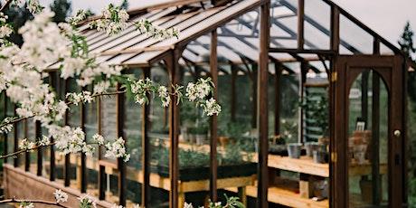 Lavender & Perennial Plant Sale tickets