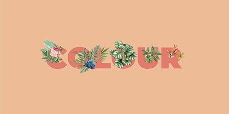 COLOUR : BREAK IT DOWN Colour Correction w/Brett Albury - NSW tickets