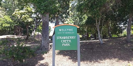 Strawberry Creek Park - Uncovering Creeks Has Its Day - Livestream tickets