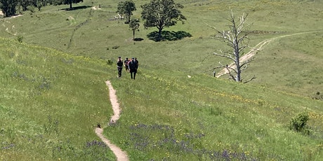 Nurtured by Nature  - April Walking Wellness Retreat -  Blue Mountains tickets