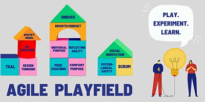The Agile Playing Field Series – Working & Thriving in an Agile Environment