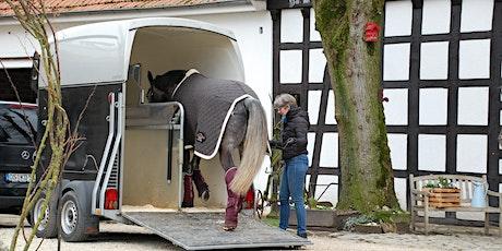 A-St.GEORG- und Mein Pferd-Webinar: Verladetraining mit Anne Krüger-Degener Tickets