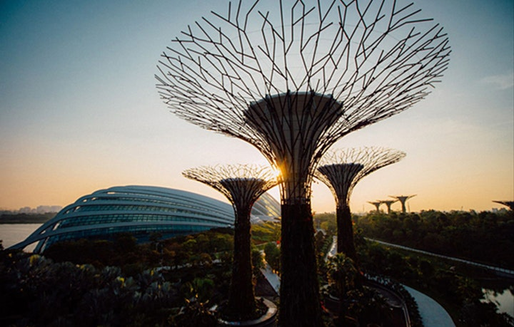 Walk For Health - Gardens By The Bay  (May 30) image