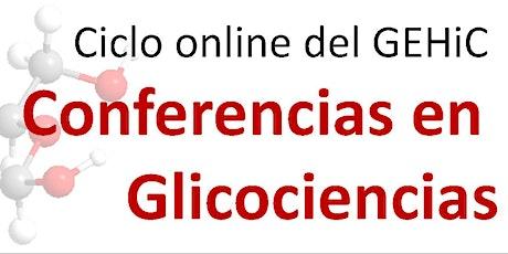 Conferencias en Glicociencias - Sesión I entradas