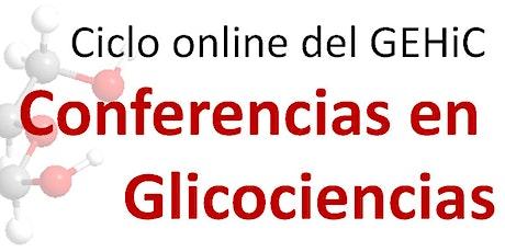 Conferencias en Glicociencias  - Sesión III entradas