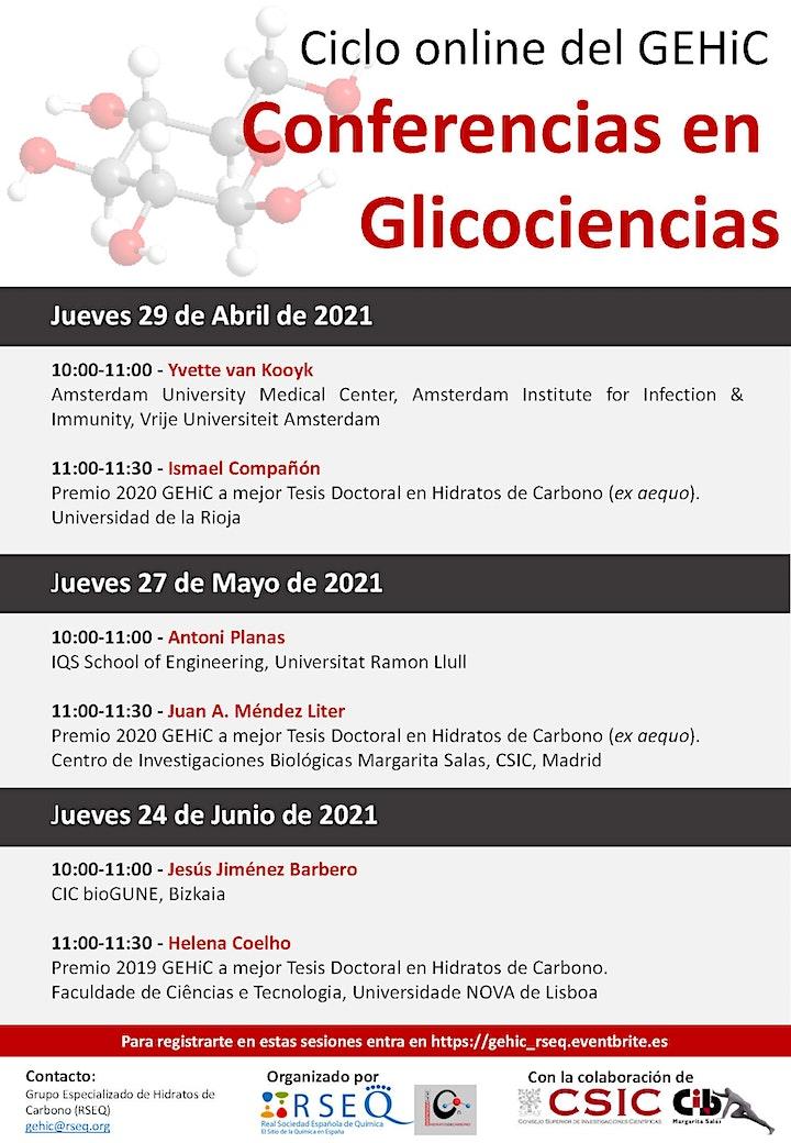 Imagen de Conferencias en Glicociencias  - Sesión III
