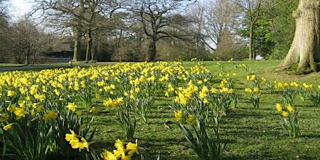 Timed entry to Biddulph Grange Garden (26 Apr - 2 May) tickets