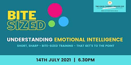 Understanding Emotional Intelligence tickets
