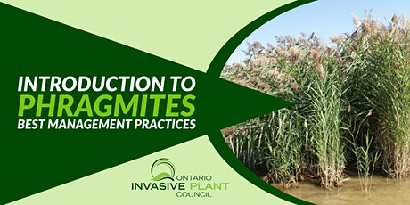Introduction to Phragmites Best Management Practices tickets