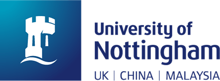 The Chinese in Britain: A History of Visitors and Settlers image