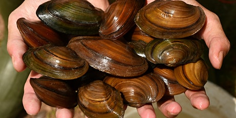 Discovering a Hidden Treasure: Freshwater Mussels tickets