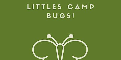 Summer Craft Camp Littles: Bugs! tickets