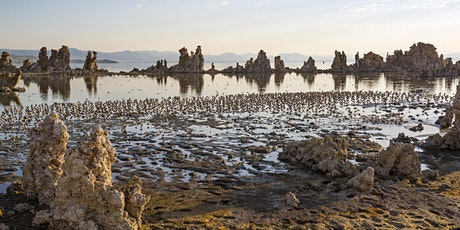 Mono Lake South Tufa Tour tickets
