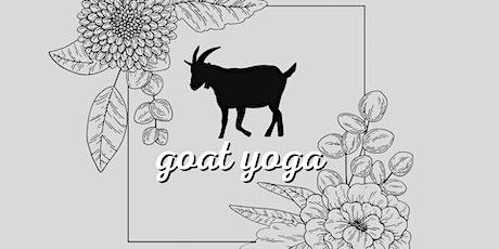 Goat Yoga (3rd Class) tickets