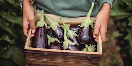 Summer Vegetable Gardening: Beyond Tomatoes tickets