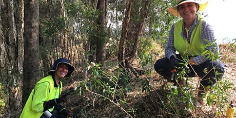 Weed identification and management for Bushcare Volunteers tickets