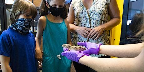 Annenberg PetSpace Kids Camp: Critter Camp Online tickets