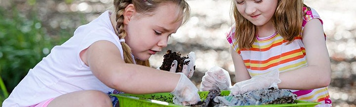Kids Go Wild! Wicked worms - presented by Natura Education image