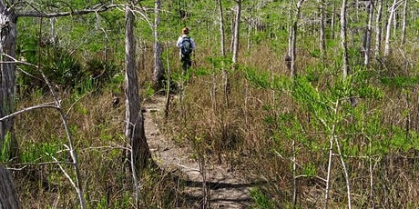 Big Cypress National Preserve (MM-63): 2-Day Backcountry Trip tickets