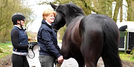 Pferdekauf - für Käufer und Verkäufer Tickets
