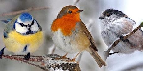 Hatfields Friday Morning Bird Walk tickets