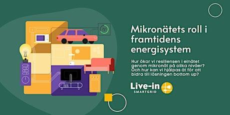 Mikronätets roll i framtidens energisystem tickets
