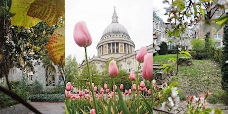 City Secret Gardens - Look Up London Walking Tour tickets