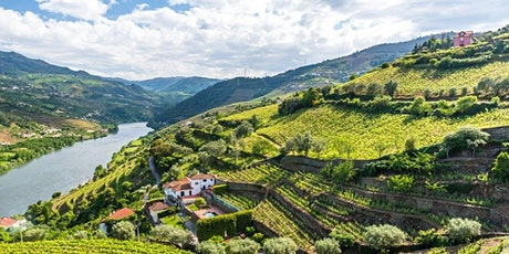 Thief Wine's Red Wines of Portugal Virtual Tasting tickets