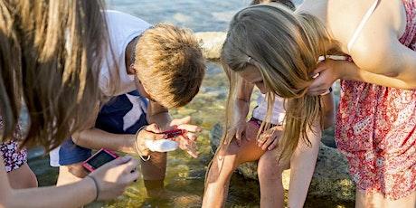 Fête de la Nature - Les secrets de la laisse de Mer à la Maronaise billets