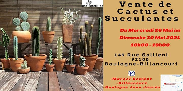 Image pour VENTE DE CACTUS ET SUCCULENTES BOULOGNE