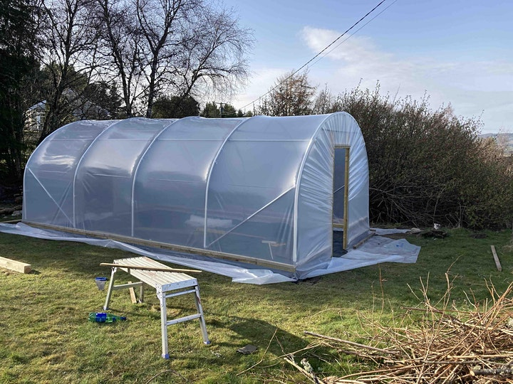 Polytunnels - The Good, The Bad and The...Difficult! image