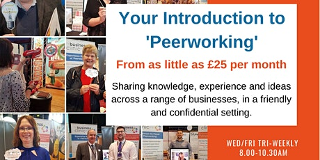 Virtual 'Peerworking' Surgery 24th September tickets