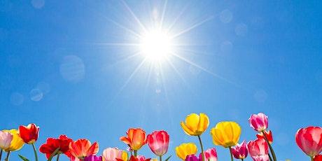 SUMMER SOLSTICE - MEDITATION & WRITING - online workshop tickets