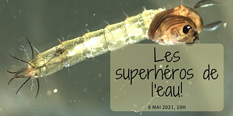 24h de science: Les superhéros de l'eau! billets