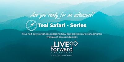 TEAL Safari – Series 2021