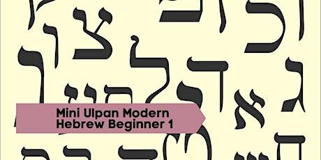 Mini Ulpan Modern Hebrew Beginner 1 tickets