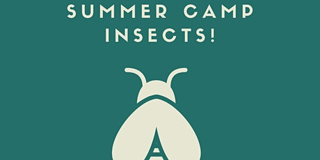 Summer Camp - Insects! tickets