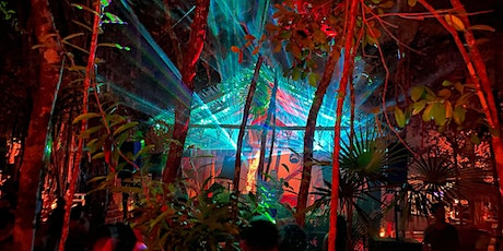 Tulum Cenote Experience with  DJ Tennis and more tickets