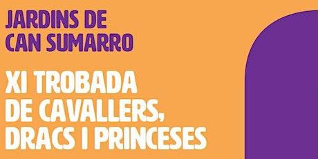 XI Trobada de Cavallers, Dracs i Princeses a Can Sumarro entradas