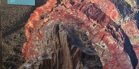 Volcanoes, pebbles & oysters: tale of two mass extinctions in Warwickshire tickets