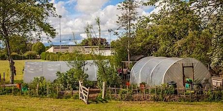 Open Veg and Fruit Gardens tickets