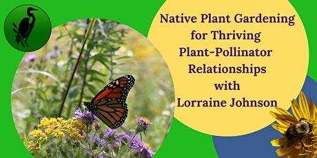 Native Plant Gardening for Thriving  Plant-Pollinator  Relationships tickets