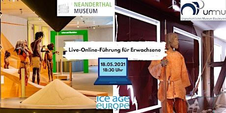 Eiszeitliche Kunst & steinzeitliche Lebensweise: Online-Führung Erwachsene Tickets