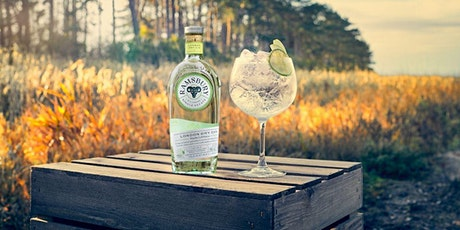 THE PERFECT GIN AND TONIC AND CUPBOARD INGREDIENTS SPRITZ MASTERCLASS -FREE tickets