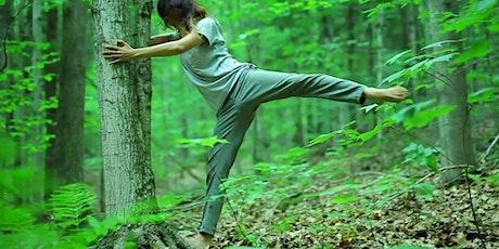 Promoisola: Camminata dei 5 sensi e bagno di bosco lungo l'anello di Prada biglietti